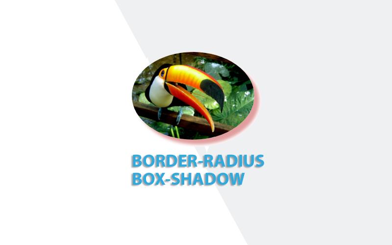 CSS3 Border Radius